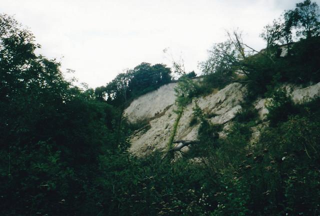 Old lanslip near Luccombe