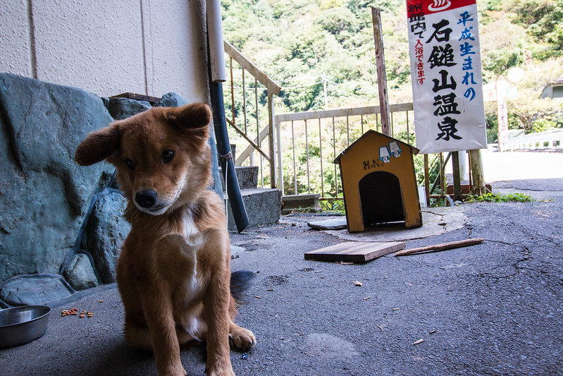 20151003-石槌山-0131.jpg