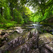 The River Esk by Dave Wilson Cumbria