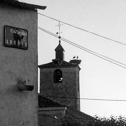 La foto de siempre #Adrados #Castilla #camelofest #everafter