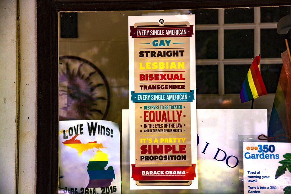 EVERY SINGLE AMERICAN GAY STRAIGHT LESBIAN BISEXUAL TRANSGENDER--Ann Arbor