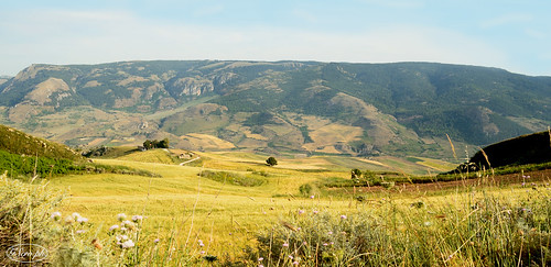 landscape spring colours country sicily