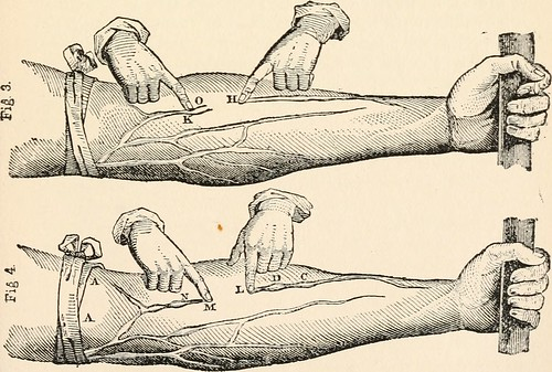 "Image from page 118 of ""An anatomical disquisition on the motion of the heart & blood in animals;"" ([1906])"