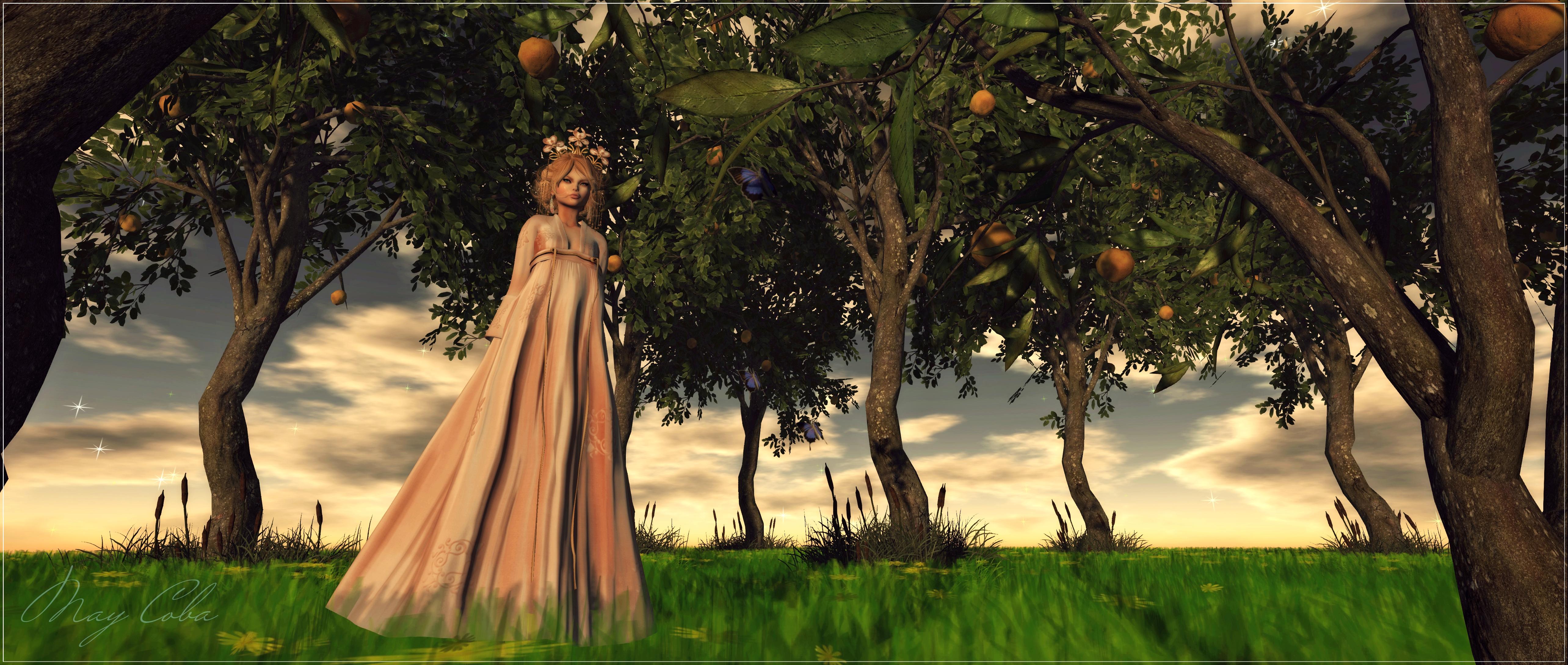 Un valle de naranjos