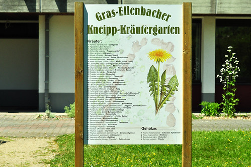 Gras-Ellenbach Odenwald Kneipp Kräutergarten Kräuter Heilkräuter Juni 2015 Foto Brigitte Stolle
