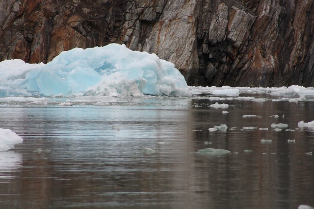 Glacier Ice in Tracy Arm Fjord