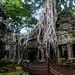Angkor Doorway