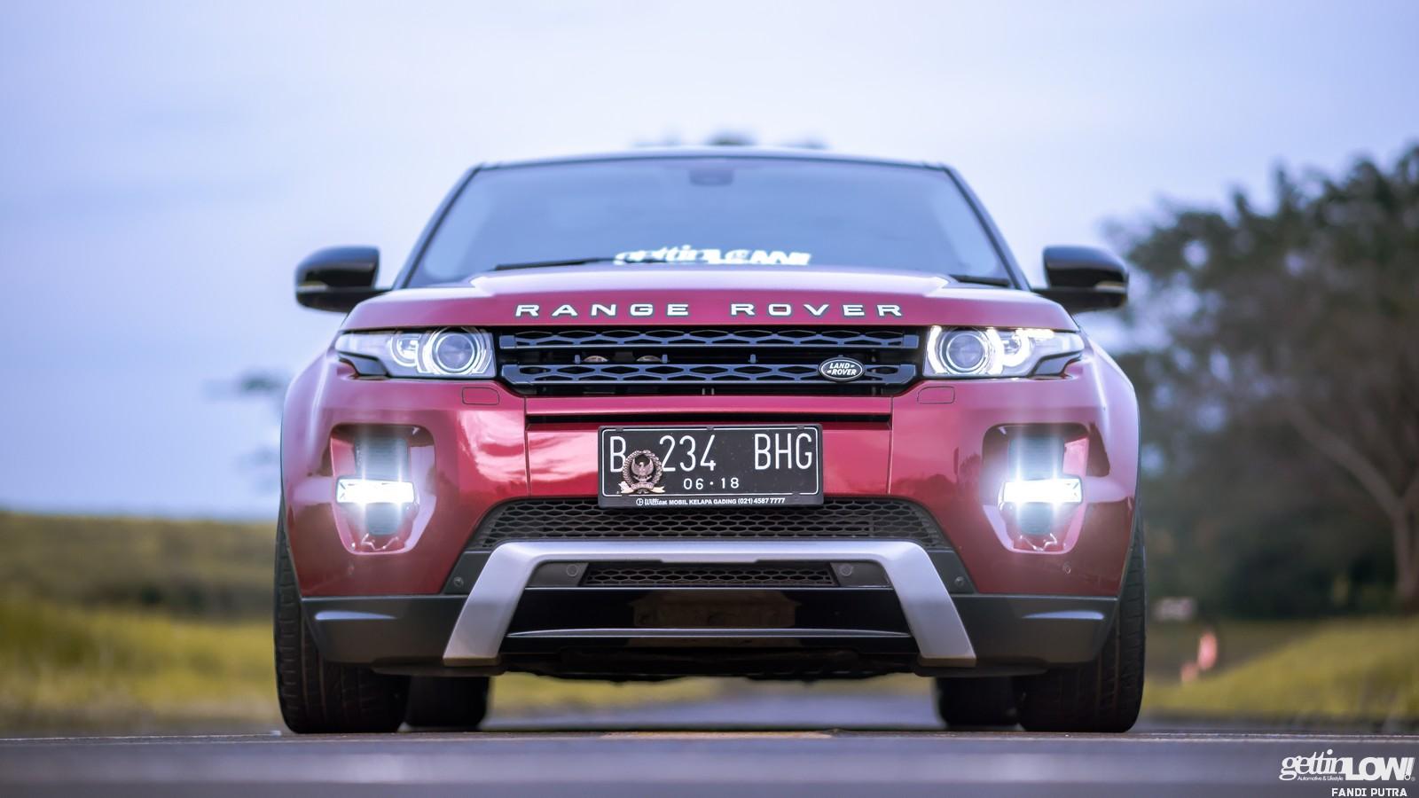 Yogie Range Rover Evoque