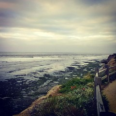 Morning walk before the rain 257/365 #project365