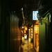 Kyoto 2015 - 29 by nemuri usagi