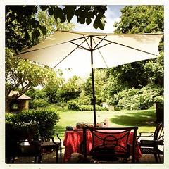 Tis weer afzien... Lufe is hard @lagrosseralle :-) #holiday #vakantie #vakantiehuis #frankrijk #france #deuxsèvres #bonheur #camping #poitoucharentes #sepvret - Photo of Caunay