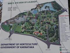 印度的公園 - naniyuutorimannen - 您说什么!