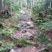 AT Sugarloaf Climb