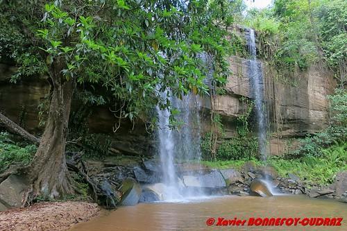 ken kenya kwale mkingani shimbahillsnationalreserve sheldrickfalls cascade kwalecounty kenyale