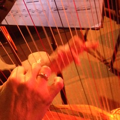 Harp in action.