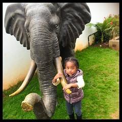 If there is something Kaya loves it's Animals!!! Big, Small, Real or Fake they make her so happy! So at every #Nakumatt she always hugs the elephant.  #mybaby #elephant #nairobi #kenya #igkenya #family #kayasadventures