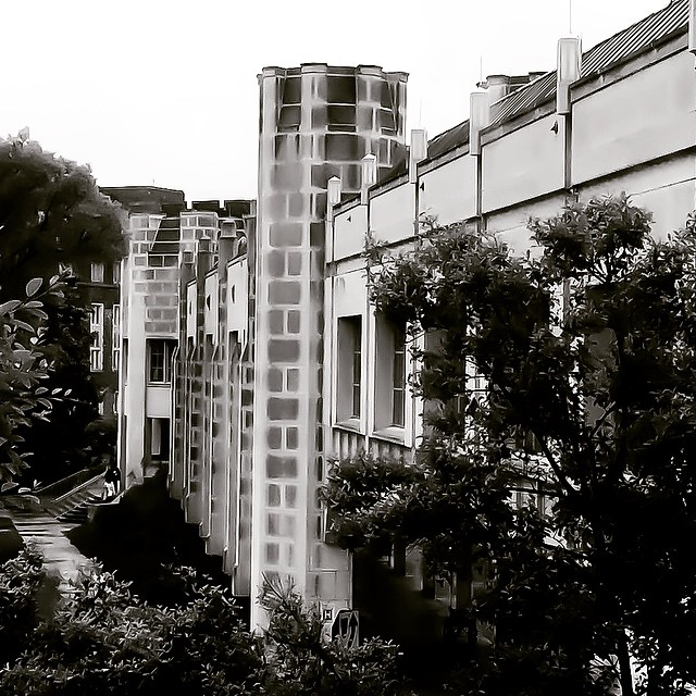 A rainy, dark day at the Duke Cancer Center, ending my sec… | Flickr