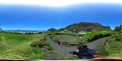 From Sea Life Park - a 360 degree Equirectangular VR