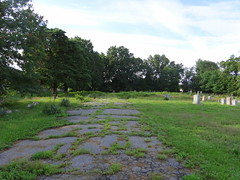 Rossville AME Zion Cemetery, memorably visited by Joseph Mitchell in 1956.