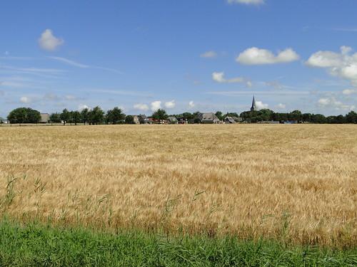 Oosterbierum village on the horizon