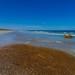 Small photo of South Coast - Australia