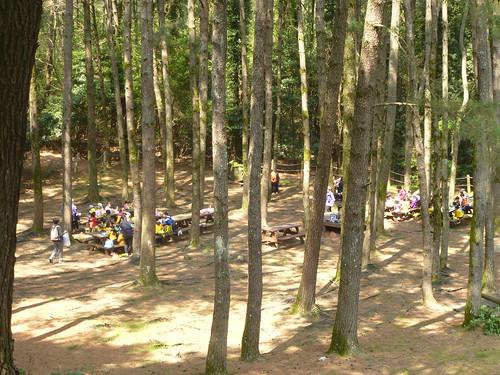 Co-Jejudo-Jeju 2-Halla Arboretum (43)