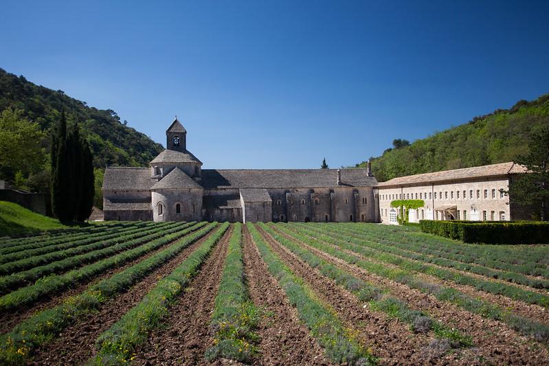 著名薰衣草景點 Senanque Abbey