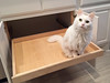 Kitty Slide-out Shelf