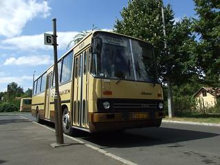 FKB-481_1