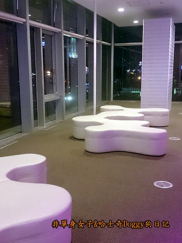 高雄市立圖書館&夢時代廣場摩天輪27