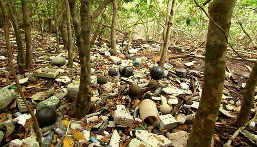 日本沖繩的西表島飽受海漂垃圾的侵襲