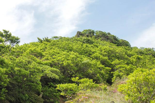 20140601-韓国岳-0084.jpg