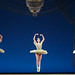 Boston Ballet's Thrill of Contact - Theme and Variations by CC Chapman