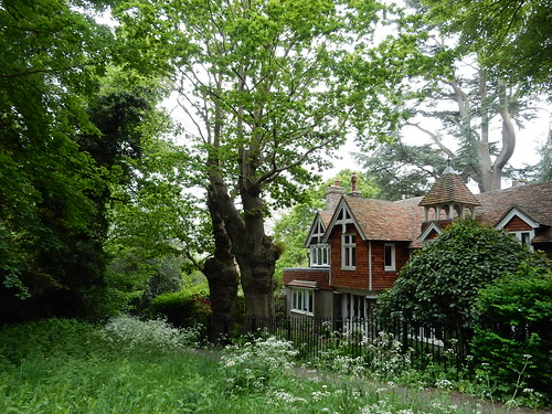 Pretty cottage with big trees