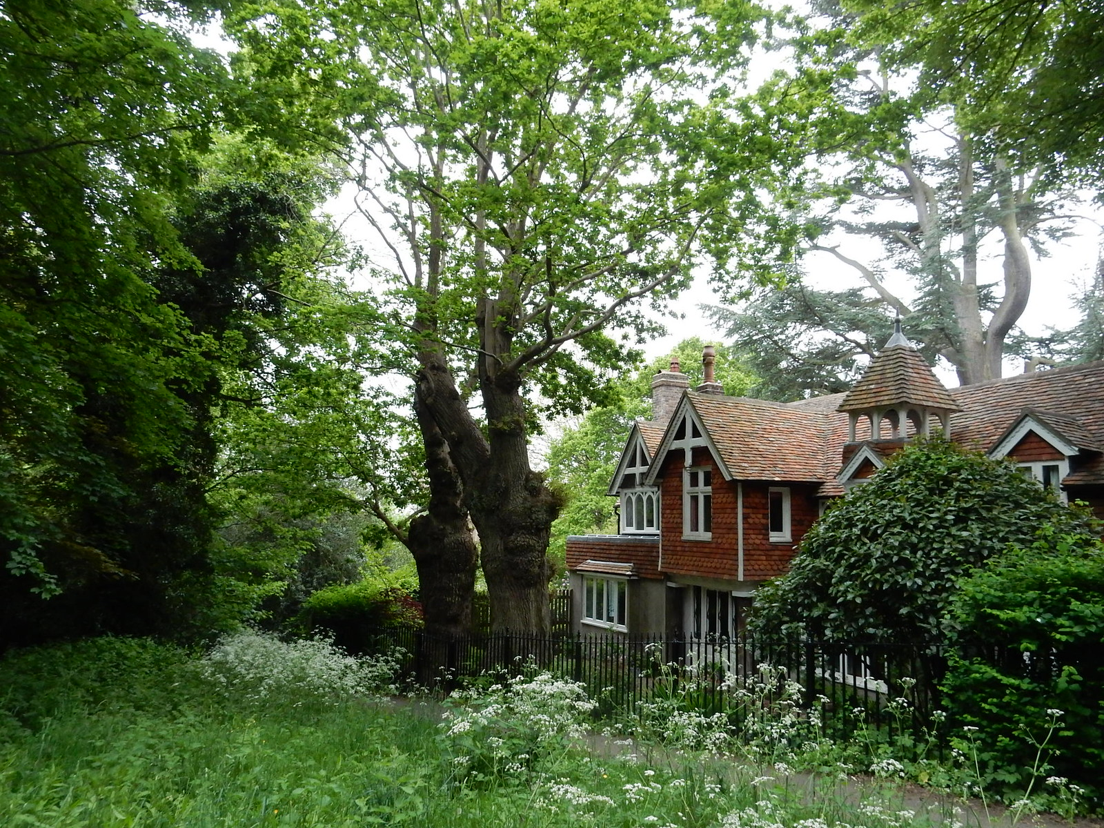 Pretty cottage with big trees Tunbridge Wells Circular