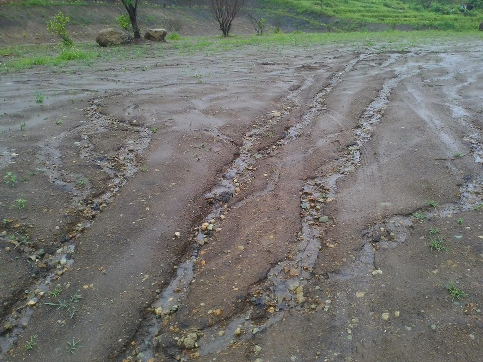 逕流形成的沖蝕溝,帶走了土壤