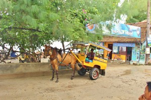 Horse drawn carriages are the fastest way to get from A to B on Gili T