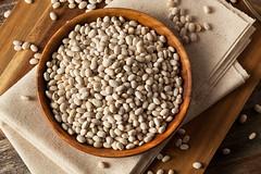 Raw Organic White Navy Beans