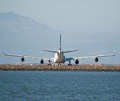 SAS Scandinavian Air Service Airbus A-340 -300 Star Alliance OY-KBM aft DSC_1510