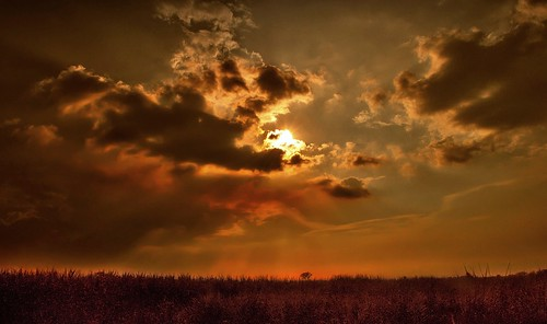 sunset sun clouds atardecer farm valle campo palmira