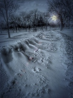 Toronto Ontario   Canada ~ Martain Goodman Trail ~ At Sunset