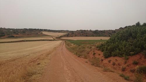 Campos de cereal a la salida de Las Inviernas