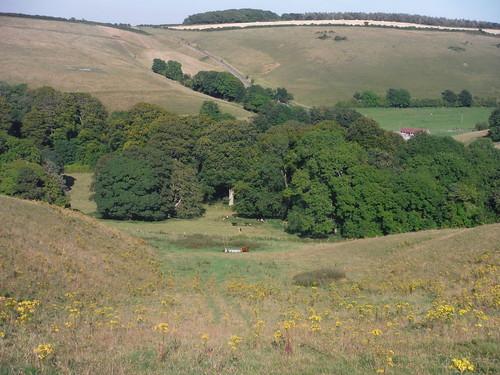 Narrow Valley, Littlebredy Farm at bottom