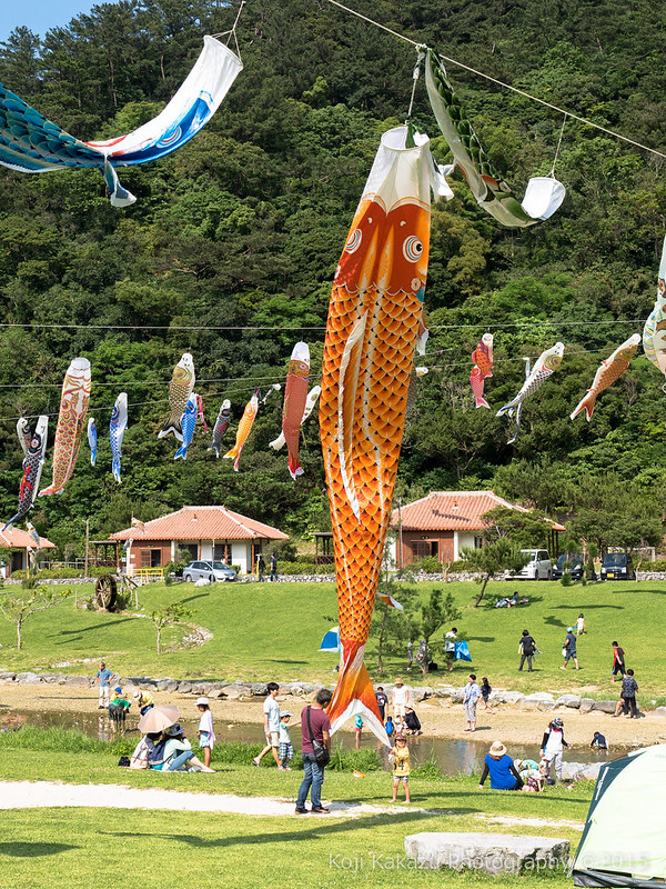 奥ヤンバル鯉のぼり祭り-83