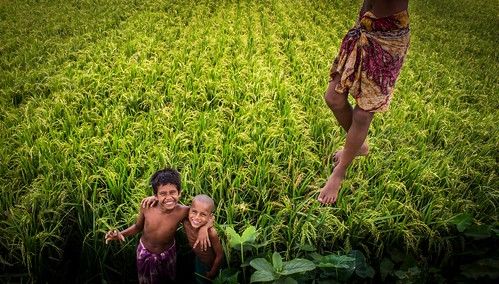 camera portrait people smile field childhood canon children lens flickr fotografie paddy exploring lifestyle scout explore kit 1855 reza bangladesh dipu bera pabna canon700d enamur xplorstats