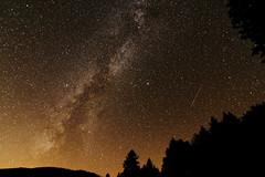 Etoile Filante / Shooting Star