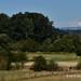 Farmland and Rainier by Standing Hawk